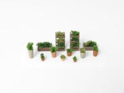 N - Flower pots